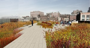 Pics: Friends of the High Line.